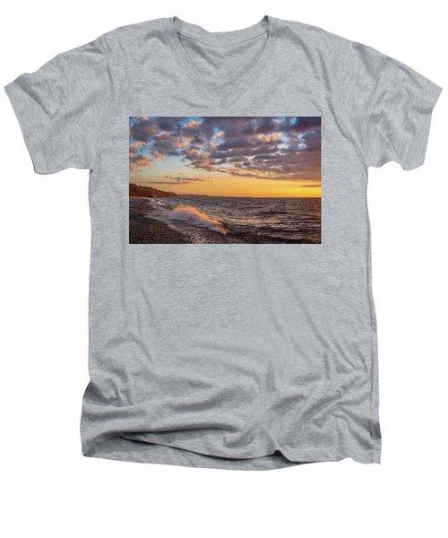 Springtime On Agate Beach Men's V-Neck T-Shirt