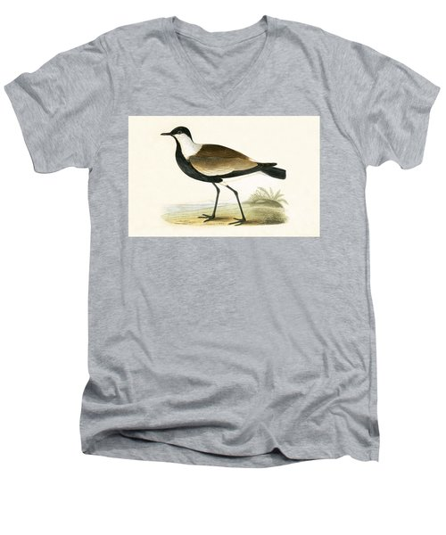 Spur Winged Plover Men's V-Neck T-Shirt by English School