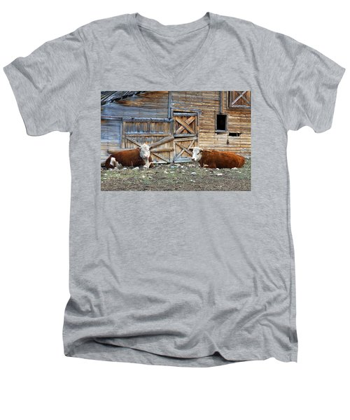 Squires Herefords By The Rustic Barn Men's V-Neck T-Shirt by Karon Melillo DeVega