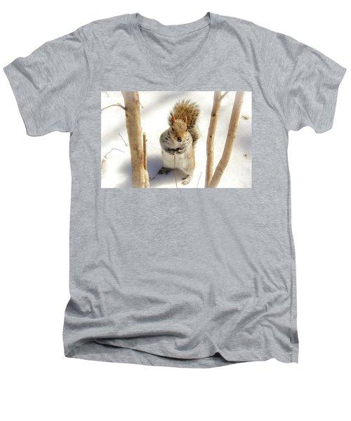 Squirrel In Snow Men's V-Neck T-Shirt