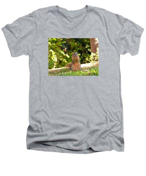 Squirrel On A Log Men's V-Neck T-Shirt