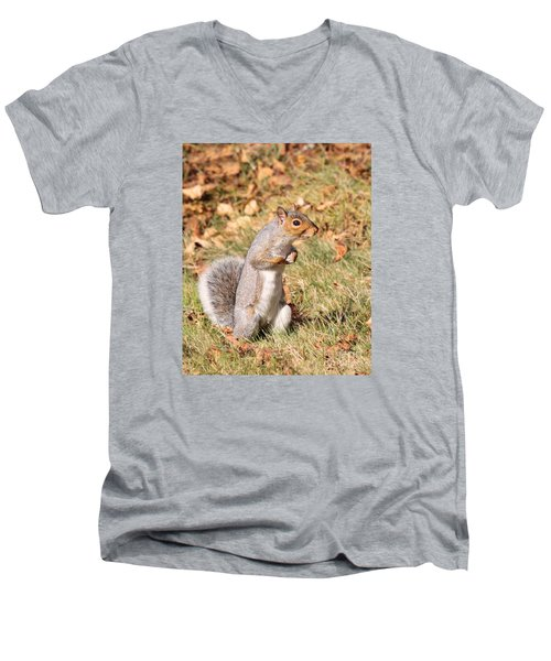 Men's V-Neck T-Shirt featuring the photograph Squirrely Me by Debbie Stahre