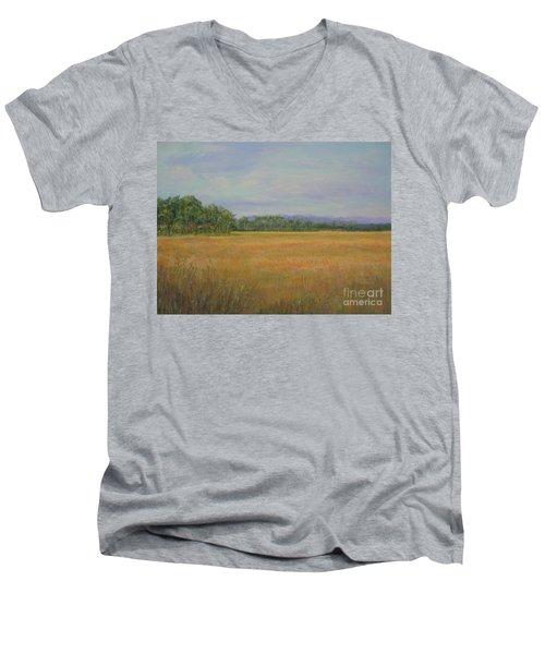 St. Marks Refuge I - Autumn Men's V-Neck T-Shirt by Gail Kent