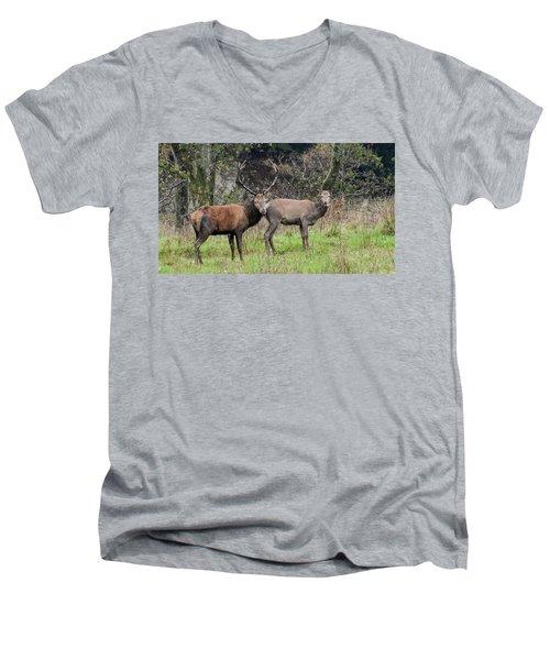 Stag And Doe  Men's V-Neck T-Shirt