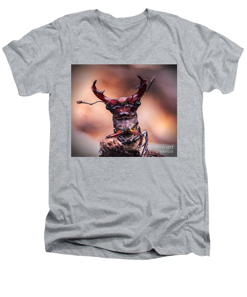 Stag Beetle Stare Down Men's V-Neck T-Shirt