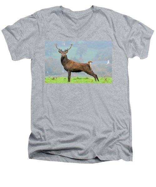 Stag Men's V-Neck T-Shirt