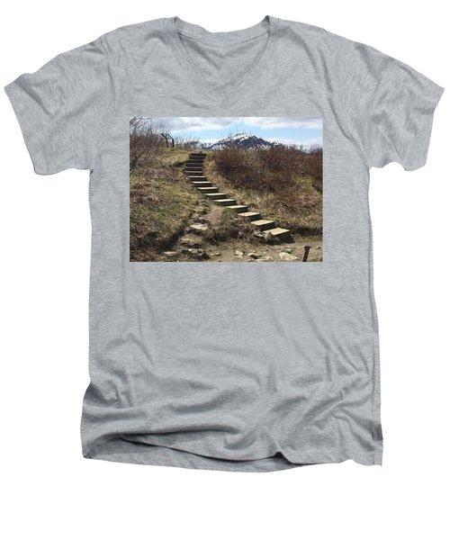 Stairway To Heaven II Men's V-Neck T-Shirt