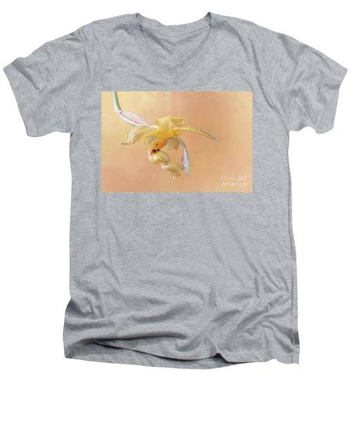 Stanhopea Orchid V2 Men's V-Neck T-Shirt