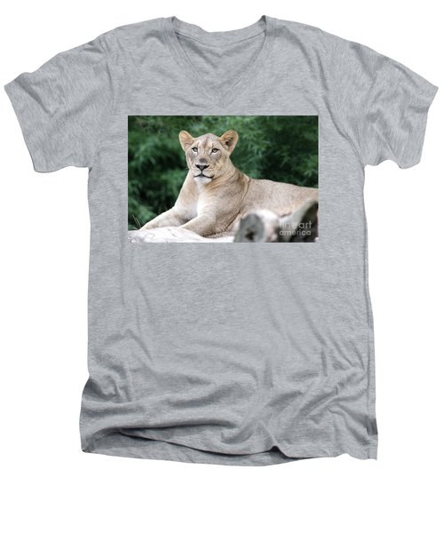 Staring Men's V-Neck T-Shirt