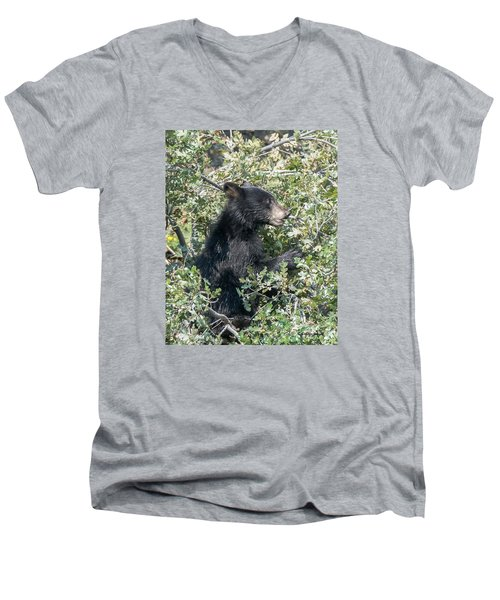 Men's V-Neck T-Shirt featuring the photograph Startled Black Bear Cub by Stephen  Johnson
