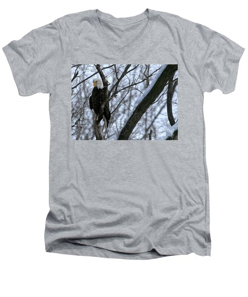 Men's V-Neck T-Shirt featuring the photograph Starved Rock Eagle by Paula Guttilla