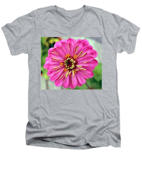 State Fair Zinnia Men's V-Neck T-Shirt