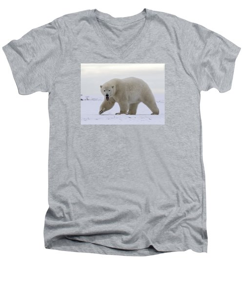 Stepping Out In The Arctic Men's V-Neck T-Shirt