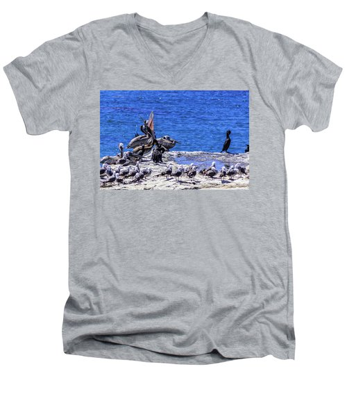 Pelican Sticking His Neck Out Men's V-Neck T-Shirt