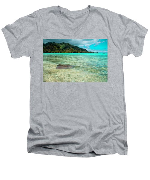 Stingray Men's V-Neck T-Shirt