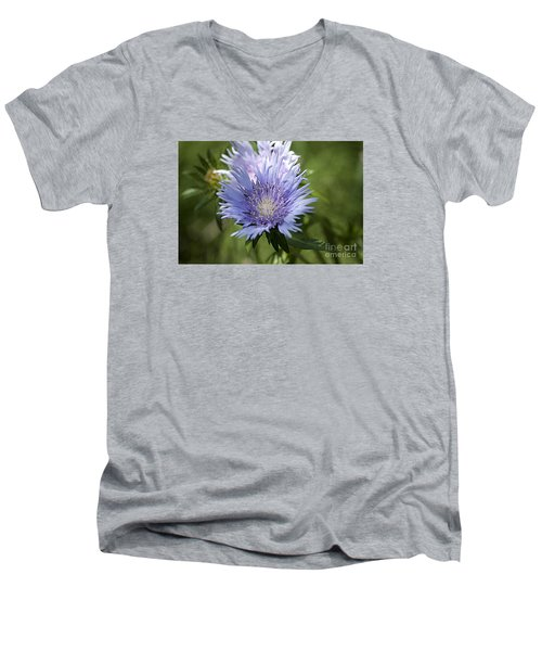 Men's V-Neck T-Shirt featuring the photograph Stokes Aster 20120703_125a by Tina Hopkins