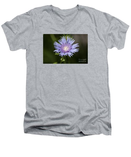 Men's V-Neck T-Shirt featuring the photograph Stokes Aster 20120703_129a by Tina Hopkins