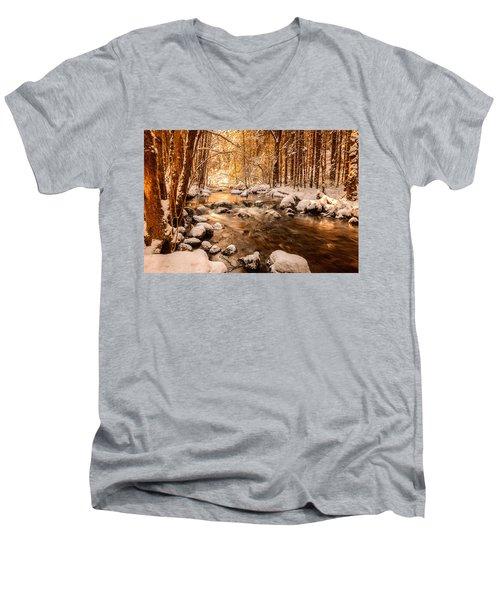 Stolen Beauty Men's V-Neck T-Shirt