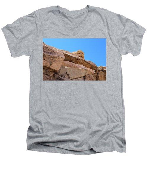 Stone  Arch In Joshua Tree Men's V-Neck T-Shirt by Viktor Savchenko
