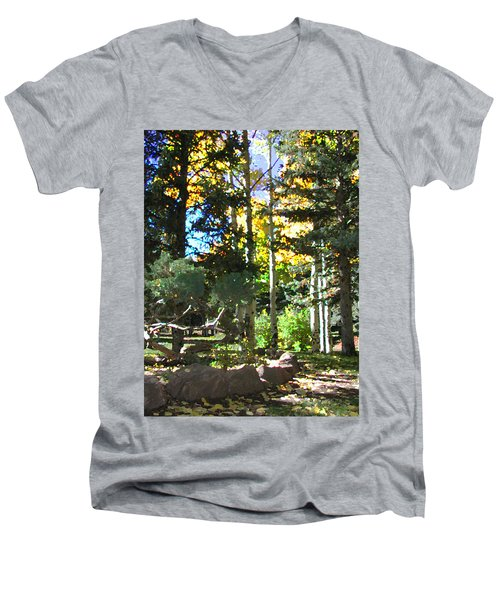 Stone Park Trails Men's V-Neck T-Shirt