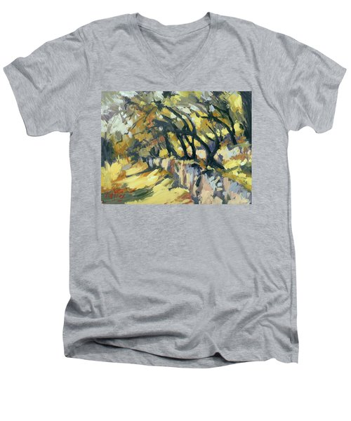 Stone Wall Olive Grove Terrace Men's V-Neck T-Shirt