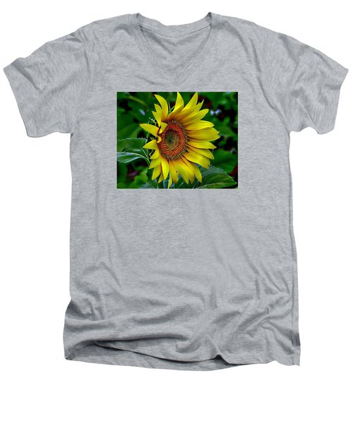 Straight Up Sunflower Men's V-Neck T-Shirt