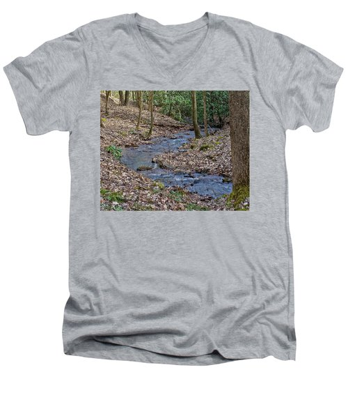 Stream Up The Hollow Men's V-Neck T-Shirt by Denise Romano
