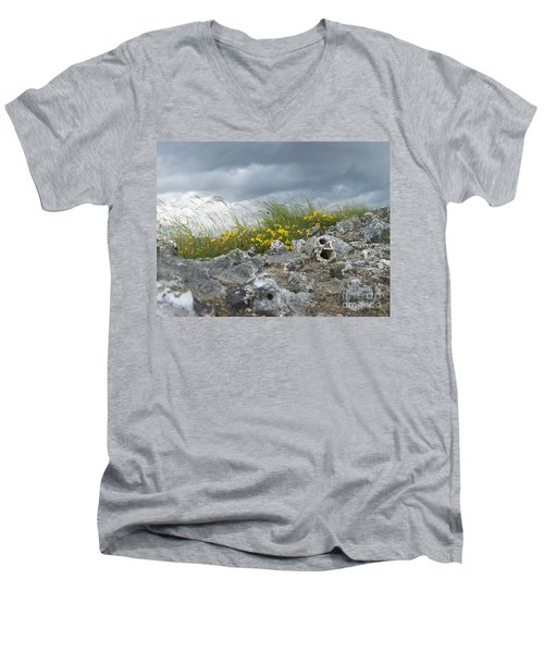 Striking Ruins Men's V-Neck T-Shirt