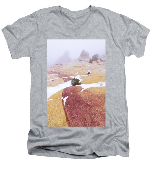 Men's V-Neck T-Shirt featuring the photograph Stripe by Chad Dutson