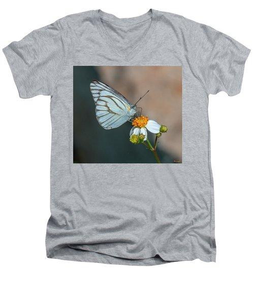 Striped Albatross Butterfly Dthn0209 Men's V-Neck T-Shirt