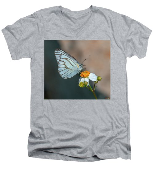 Striped Albatross Butterfly Dthn0209 Men's V-Neck T-Shirt