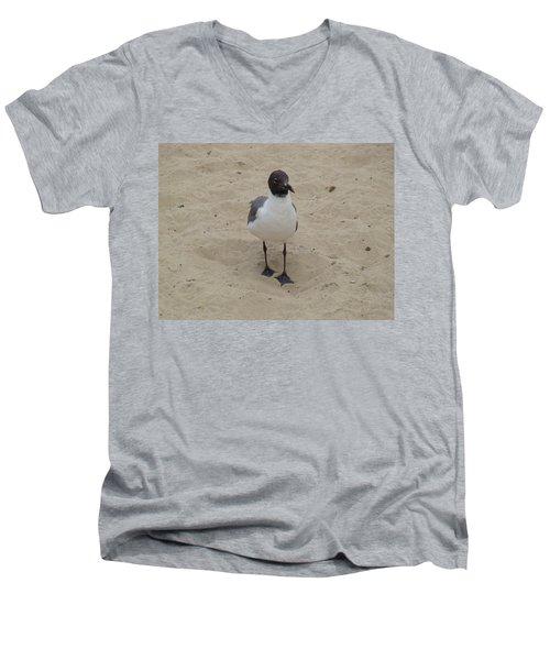 Struttin' Seagull  Men's V-Neck T-Shirt