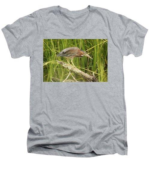 Studious Green Heron Men's V-Neck T-Shirt