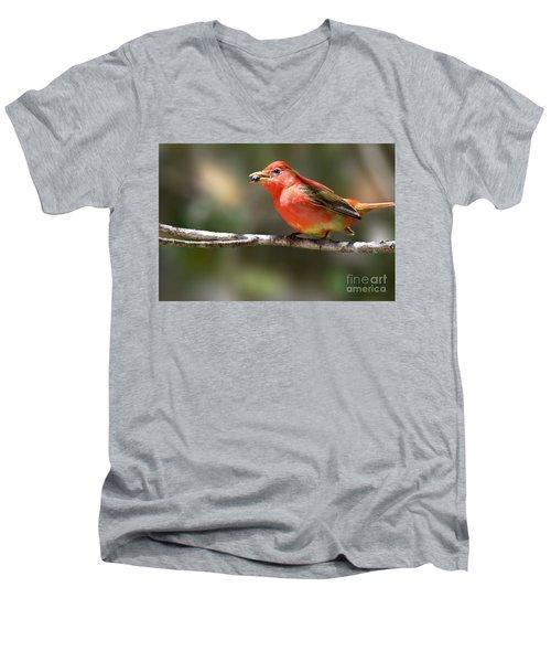 Stuffed Summer Tanager Men's V-Neck T-Shirt