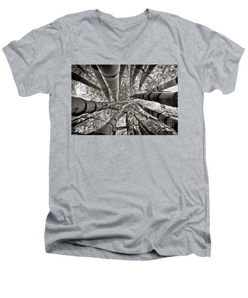 Stunning Bamboo Forest Men's V-Neck T-Shirt