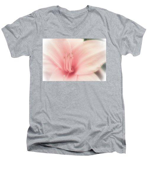 Subtle And Pink Men's V-Neck T-Shirt