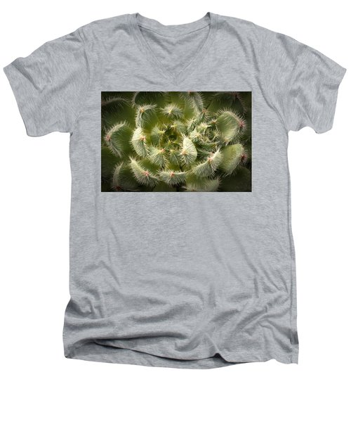 Men's V-Neck T-Shirt featuring the photograph Succulent Pride  by Catherine Lau