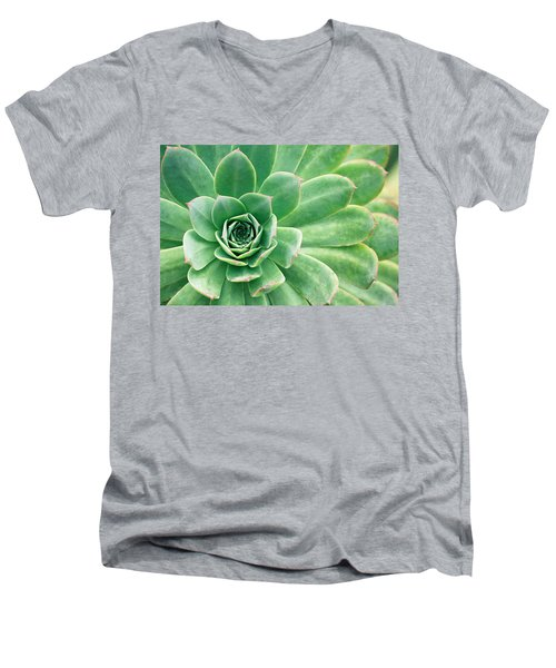 Succulents II Men's V-Neck T-Shirt