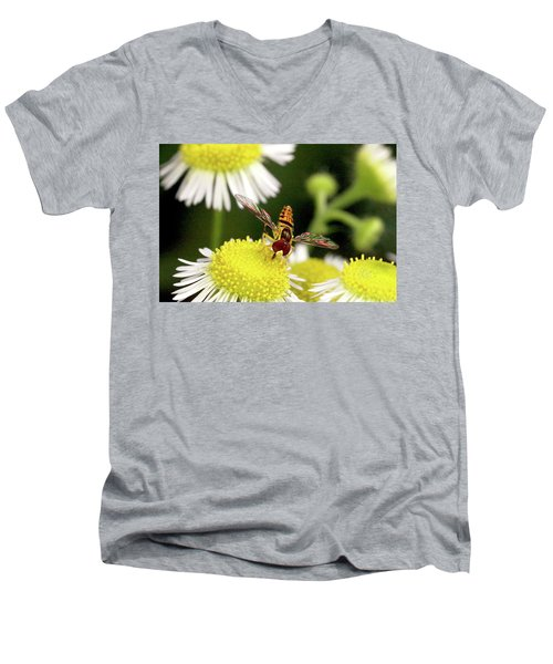 Men's V-Neck T-Shirt featuring the photograph Sugar Bee Wings by Meta Gatschenberger