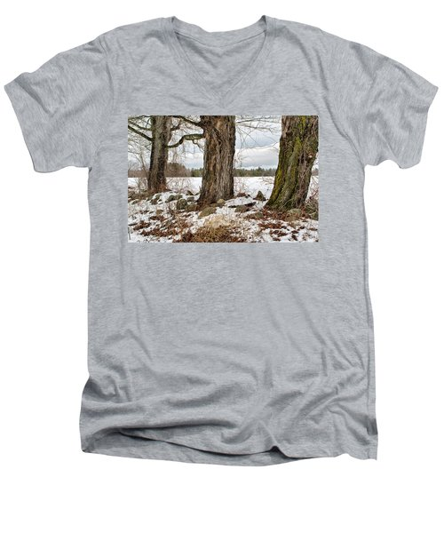 Sugar Maples  Men's V-Neck T-Shirt