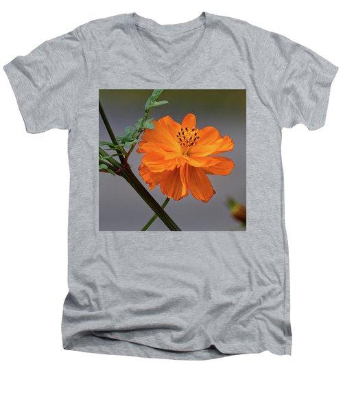 Sulfur Cosmos Men's V-Neck T-Shirt
