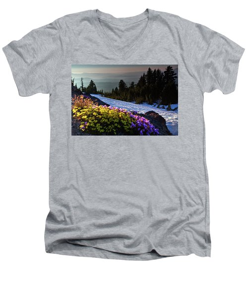 Men's V-Neck T-Shirt featuring the photograph Summer And Winter by David Chandler