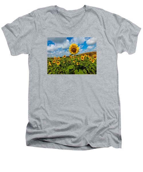 Summer At The Farm Men's V-Neck T-Shirt
