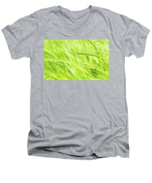 Summer Barley. Men's V-Neck T-Shirt