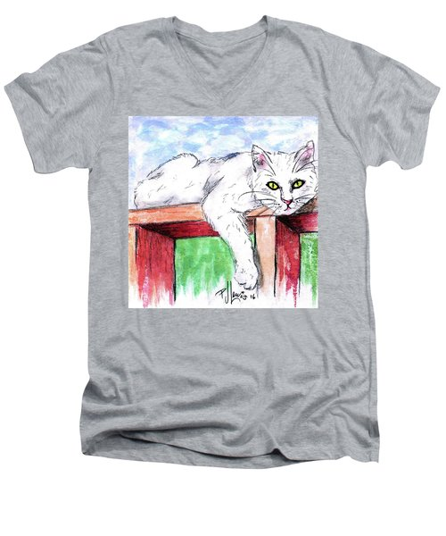 Summer Cat Men's V-Neck T-Shirt