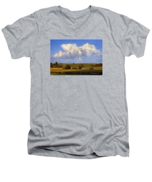 Summer Evening Formations Men's V-Neck T-Shirt