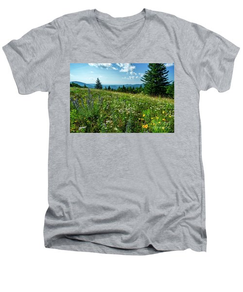 Summer Flowers In The Highlands Men's V-Neck T-Shirt