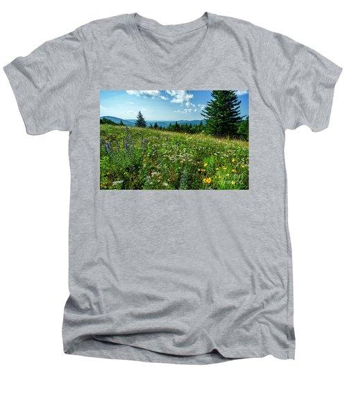 Summer Flowers In The Highlands Men's V-Neck T-Shirt