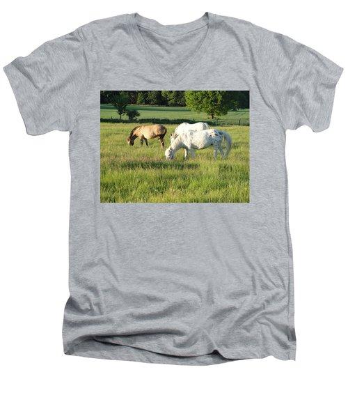 Summer Grazing Men's V-Neck T-Shirt