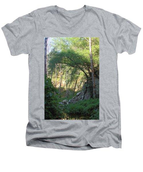 Summer On Bitten Path Men's V-Neck T-Shirt